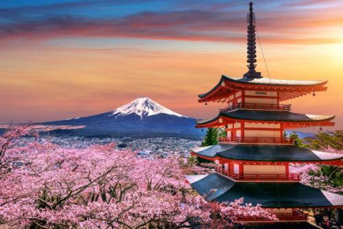 sakura chureito pagoda japán fuji