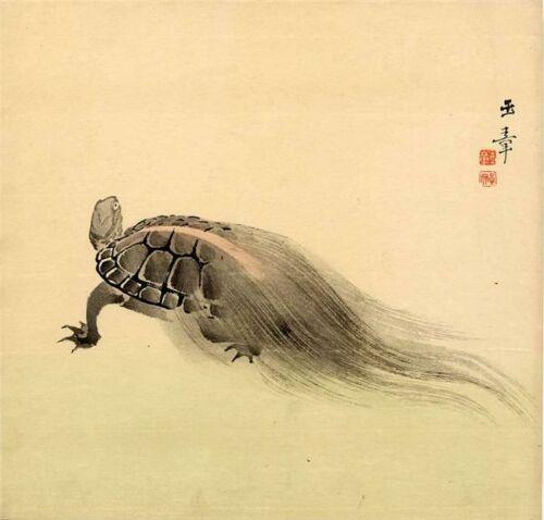 minogama japan teknős japan mitologia