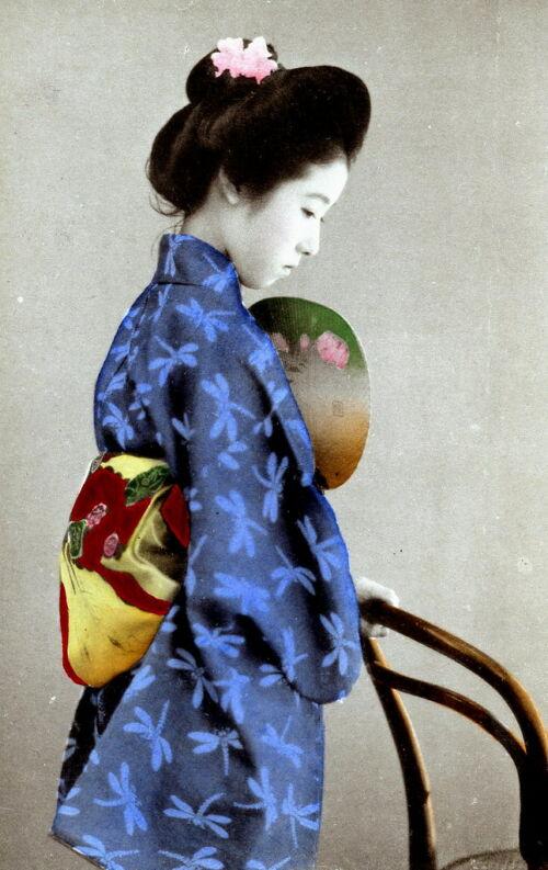 kimono japán szimbólum szitakötő