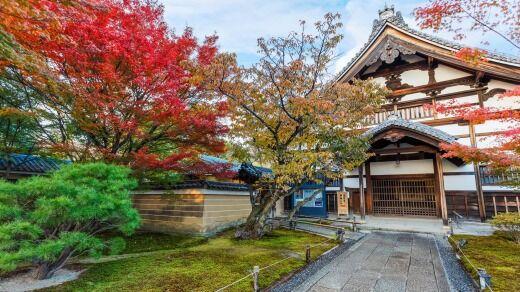 kodai ji, momiji, ősz, japán juhar, kioto, kyoto, mindar, robot pap